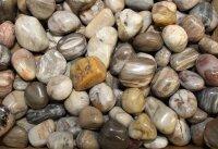Trommelsteine versteinertes Holz, 1 KG