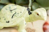 Schildkröte aus Serpentin